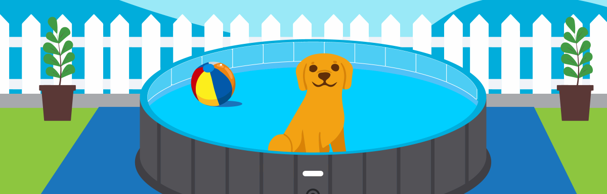 The Best Above Ground Pools For Dogs